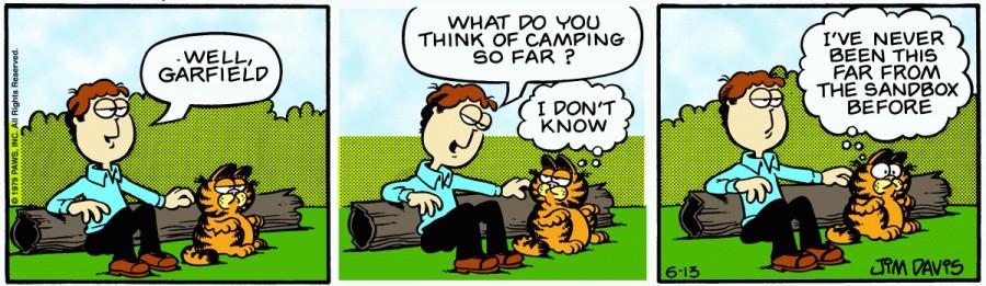 Оригинал комикса про Гарфилда от 13 июня 1979 года