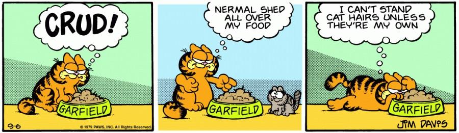 Оригинал комикса про Гарфилда от 06 сентября 1979 года