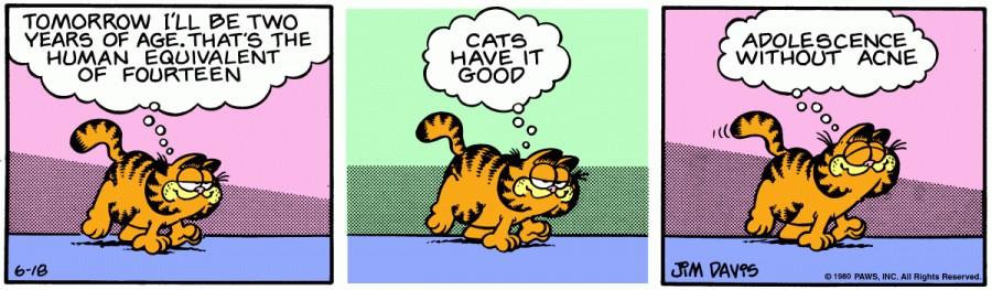 Оригинал комикса про Гарфилда от 18 июня 1980 года