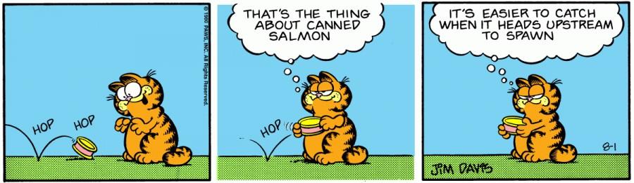 Оригинал комикса про Гарфилда от 01 августа 1980 года