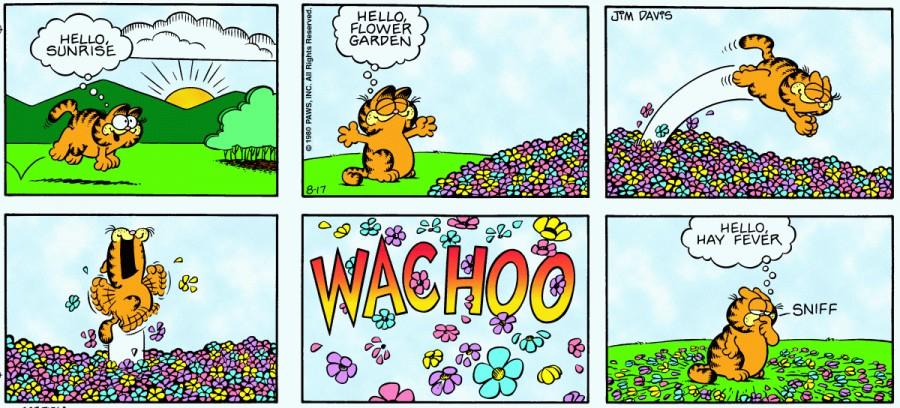 Оригинал комикса про Гарфилда от 17 августа 1980 года