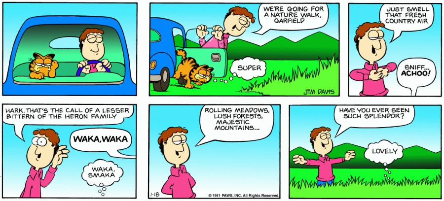 Оригинал комикса про Гарфилда от 18 января 1981 года