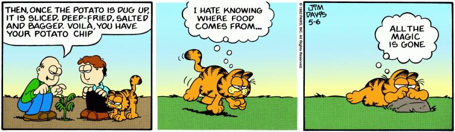 Оригинал комикса про Гарфилда от 06 мая 1982 года